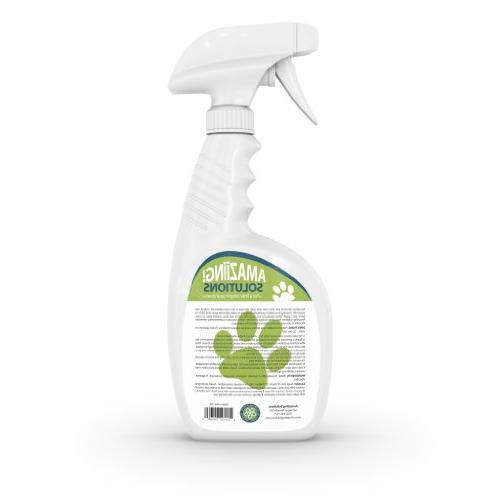 Amaziing Solutions Eliminator Carpet Urine Professional Strength Enzymatic Solution, Natural and Floors