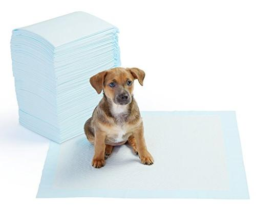 pet training puppy pads regular